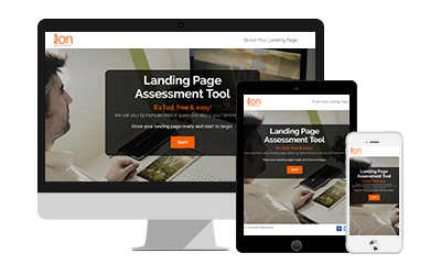 Landing Page Assessment