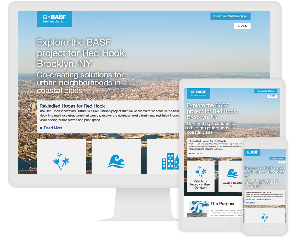 BASF and ion interactive Case Study